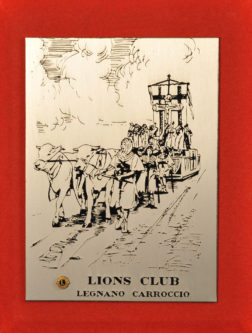 Riconoscimento dei Lions